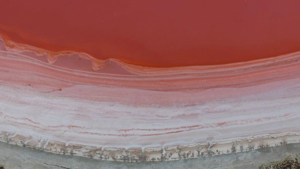 Danau Pink di Australia Barat. (Doc: jarrd.tdd/Dronestagram)