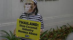 Sejumlah orang yang tergabung dalam PETA menggelar aksi di depan Kedutaan Besar Thailand di Jakarta, Selasa (8/12/2020). Mereka meminta dubes Thailand untuk Indonesia mengakhiri penggunaan tenaga kerja monyet di industri kelapa Thailand oleh perusahaan seperti Chaokoh. (Liputan6.com/Faizal Fanani)