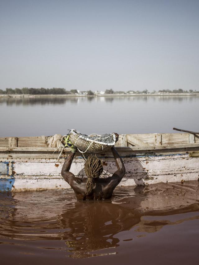 Memanen garam di Danau Retba atau danau merah muda di Senegal. (Marco Longari/AFP)