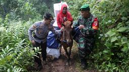 Polisi dan tentara mengawal petugas Pemilu 2019 yang menaiki kuda untuk mendistribusikan logistik ke TPS di desa-desa terpencil di Tempurejo, Jawa Timur, Senin (15/4). Selain kotak suara, petugas juga membawa perlengkapan pemilu lainnya. (AP Photo/Trisnadi)