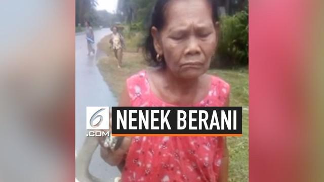 Seorang nenek asal Thailand, bernama Praneat Kaewbangtu menangkap ular kobra  dengan tangan tanpa membutuhkan bantuan alat.  Ia kemudian membawa ular tersebut jalan-jalan.