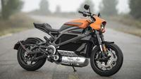 Harley-Davidson LiveWire mulai dipasarkan di Amerika Serikat. (Harley-Davidson)