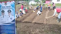 Penyiapan lahan khusus oleh Kementan untuk budidaya pertanian demi pemberdayaan Kelompok Wanita Tani (KWT) di Desa Labotan, Banggai, Sulawesi Tengah. (Ist)