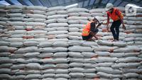 Dua pekerja mengecek beras milik Perum Bulog di kawasan Pulo Mas, Jakarta, Kamis (26/11/2020). Kementan kembali memastikan bahwa meski tengah dilanda pandemi Covid-19 pasokan beras hingga akhir tahun masih ada stok beras sebanyak 7,1 juta ton. (Liputan6.com/Faizal Fanani)