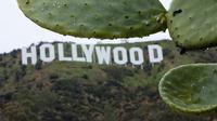 Ilustrasi Hollywood (AFP)