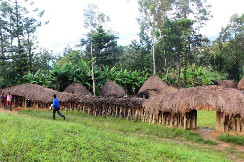 Honai pun dipisahkan, antara honai laki-laki dan perempuan. (Foto: Liputan6.com/Fitri Haryanti Harsono)