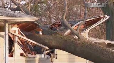 Akibat badai pada 8 Maret 2017, pohon tumbang dan aliran listrik padam
