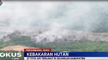 Sebagian besar lahan yang terbakar berada di sekitar areal perkebunan milik masyarakat dan perusahaan.