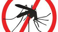 Tak hanya bahan-bahan kimia saja yang dapat mengusir nyamuk, bahan herbal alami ini ternyata juga ampuh dalam membunuh nyamuk.