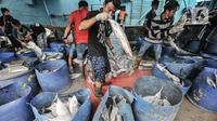Aktivitas nelayan saat menurunkan ikan hasil tangkapan di Pelabuhan Muara Baru, Jakarta, Kamis (5/8/2021). Data KNTI mencatat, tingkat ekonomi nelayan kembali bangkit dan kian membaik sepanjang tahun 2021 meski masih berada di tengah pandemi Covid-19 yang belum usai. (merdeka.com/Iqbal S. Nugroho)