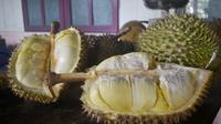 Montong Oranye durian asal Banyumas. (Foto: Liputan6.com/Muhamad Ridlo)
