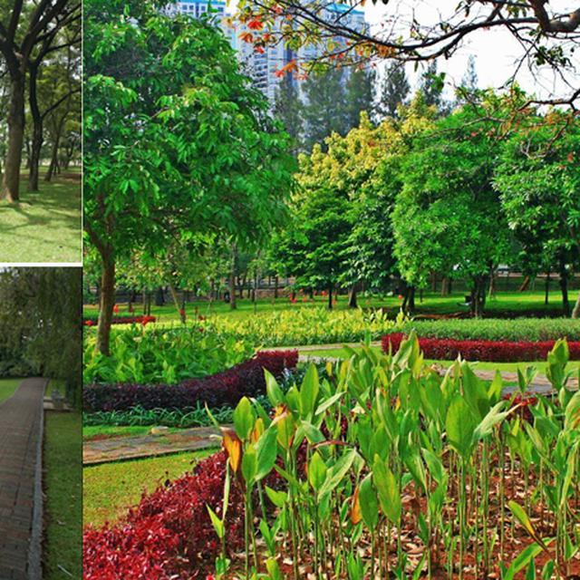 Taman Cattleya Tempat Alternatif Refreshing Di Jakbar Citizen6 Liputan6 Com