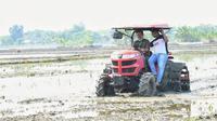 Menteri Pertanian Syahrul Yasin Limpo melakukan percepatan tanam padi di Desa Ngadirejo, Kecamatan Widang, Kabupaten Tuban, Jumat (26/6).