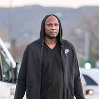 Lamar Odom (via dailymail.co.uk)