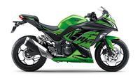 Kawasaki Ninja 300 (Motorbeam)