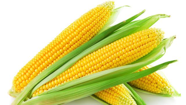Image result for Jagung