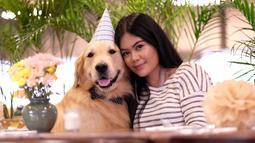 Kalau ini potret saat snowee, nama anjing peliharaannya tengah berulang tahun. Resyana Hikmayudi terlihat sangat begitu menyayanginya ya, sampai-sampai dirayakan ulang tahun snowee. (Liputan6.com/IG/@resyanahikmayudi)