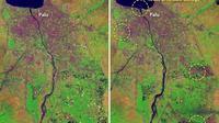 Foto yang diabadikan oleh satelit NASA, Landsat 8, terkait gambaran sebelum dan sesudah tsunami Palu. (Dokumentasi NASA)