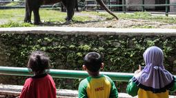 Sejumlah anak TK melihat gajah di Taman Marga Satwa Ragunan, Jakarta, Kamis (13/12). Kegiatan tersebut untuk mengajarkan anak-anak untuk lebih mengenal binatang-binatang. (Liputan6.com/Faizal Fanani)