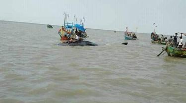 Seekor paus ditemukan nelayan terdampar di perairan Cirebon dalam kondisi mati. (Foto: Komunitas Mancing Hore Cirebon untuk Liputan6.com)