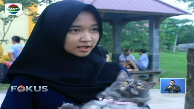 Komunitas pecinta kucing di Kutai Kertanegara dirikan Posyandu Kucing, guna mengedukasi pemiliknya agar dapat menjaga kesehatan hewan peliharaannya tersebut.