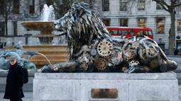 Warga saat melintasi patung singa di Trafalgar Square, London, Inggris, (28/1).   Alasan pemasangan patung ini yaitu untuk menyoroti ancaman terhadap singa yang mulai terancam punah. (REUTERS / Stefan Wermuth)
