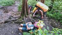 Jalur pendakian Gunung Kerinci melalui pintu rimba R10 Kersik Tuo, Kayu Aro. Foto diambil tahun 2019. (Liputan6.com / Gresi Plasmanto)