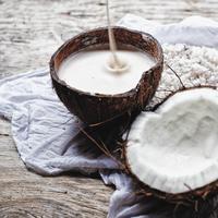 ilustrasi santan kelapa/copyright By homelesscuisine (Shutterstock)