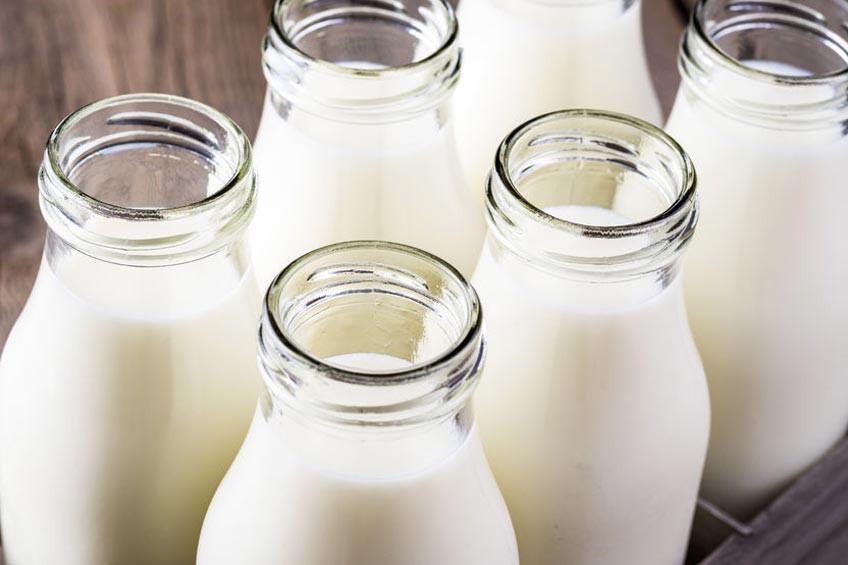 Mana Lebih Sehat, Susu Sapi atau Susu Kambing?
