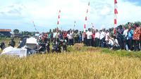 Menteri Pertanian Amran Sulaiman menyerahkan bantuan alat mesin pertanian (alsintan) canggih sekaligus tanam dan panen perdana dengan mesin otomatis di Wanareja, Cilacap, 2017. (Foto: Liputan6.com/Muhamad Ridlo)