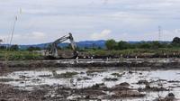 Alat berat dari TNI AD sedang menggarap lahan di Desa Tanjung Batu, Kecamatan Tenggarong Seberang, Kabupaten Kutai Kartanegara untuk dijadikan lumbung pangan, (foto: istimewa)