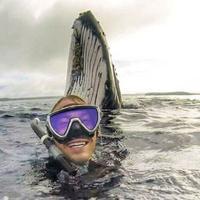 Seorang penyelam berhasil mendapatkan gambar menakjubkan dengan photobomb seekor paus di belakangnyaq