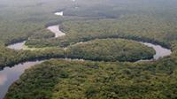 Taman Nasional Salonga di Republik Demokratik Kongo (dok.wikimedia commons)