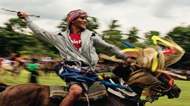 Pasola merupakan tradisi perang di atas kuda dengan menggunakan tongkat kayu yang disebut sola. Foto: Vice.com