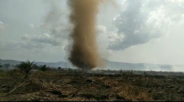 Angin puting beliung yang bertiup di wilayah Kolaka Timur saat kebakaran hutan gambut, Minggu (1/12/2019).(Liputan6.com/Ahmad Akbar Fua)