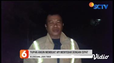 Api yang diduga berasal dari pembukaan lahan sudah menjalar ke kawasan hutan jati petak 24 milik Kesatuan Pemangku Hutan Dander Bojonegoro, Jawa Timur. Tiupan angin kencang membuat kobaran api bergerak tidak terkendali dan menghanguskan sekitar 10 he...