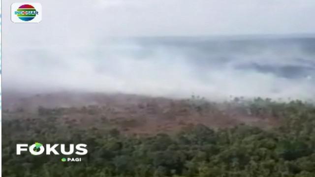 Pemprov Riau menetapkan status siaga terhadap kebakaran hutan dan lahan di seluruh wilayah hingga tiga bulan ke depan.