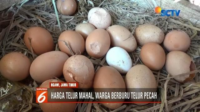 Harga telur ayam di wilayah Bojonegoro dan Ngawi, Jawa Timur, semakin merangkak naik. Alhasil, banyak warga yang memburu telur pecah dengan harga lebih murah.