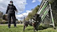 Polisi Thames Valley telah mengerahkan petugas dan anjing untuk melakukan pemeriksaan di seluruh kota menjelang pemakaman Pangeran Philip (THAMES VALLEY POLICE)