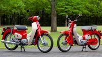 Honda Super Cub. (The  Vintage News)