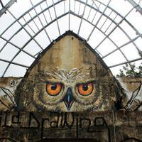 Seniman asal Indonesia yang karya mural-nya sudah mendunia ini bahkan telah disejajarkan dengan seniman asal Inggris, Bansky lho.