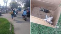 Driver ojol rela nyebur got selamatkan kucing. (Sumber: Twitter/imamsarodjo)