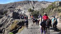 Joki kuda membawa wisatawan turun dari Gunung Bromo di Taman Nasional Bromo Tengger Semeru, Jawa Timur, Sabtu (4/11). Joki akan mendampingi wisatawan keliling kawasan Gunung Bromo. (Liputan6.com/Fery Pradolo)