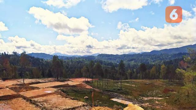 Kawasan Hutan Produktif Terbatas (HPT) Mapongka, Kecamatan Mangkendek, Kabupaten Tana Toraja, Sulawesi Selatan (Eka Hakim/Liputan6.com)