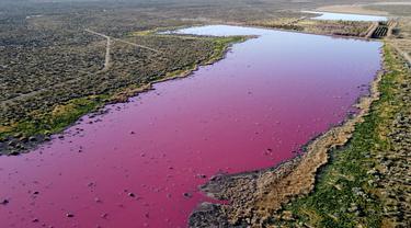 Pemandangan udara dari laguna yang berubah menjadi merah muda karena limbah industri perikanan, di provinsi Patagonian, Chubut, Argentina, pada 23 Juli 2021. Fenomena itu lantas membuka kontroversi pemerian izin perusahaan di Argentina. (DANIEL FELDMAN / AFP)