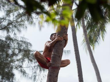 Seorang pria memanjat pohon saat mengikuti kejuaraan dunia pertama panjat pohon kelapa di Papeete, Polinesia (15/7). Kompetisi ini juga sebagai bagian dari festival budaya besar bagi orang Polinesia. (AFP Photo/Gregory Boissy)