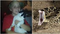 Seekor kucing bernama Oreo dengan berani mempertaruhkan nyawanya untuk melindungi tuannya dari ular derik