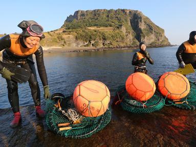 Haenyeo Korea Selatan keluar dari air setelah menangkap kerang dan abalone di pulau Jeju, 23 November 2018. Haenyeo merupakan sebutan untuk para penyelam wanita yang berasal dari pesisir Korea dengan jangka umur 35 sampai 90 tahun. (AP/Ahn Young-joon)