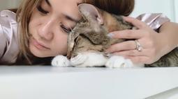Bersama kucingnya, Bunga Citra Lestari tampak tidur sangat nyenyak. Penampilan BCL yang tampak natural ini sungguh bikin jatuh hati. Pantas saja ibu dari Noah Sinclair ini miliki banyak penggemar. (Liputan6.com/IG/@bclsinclair)