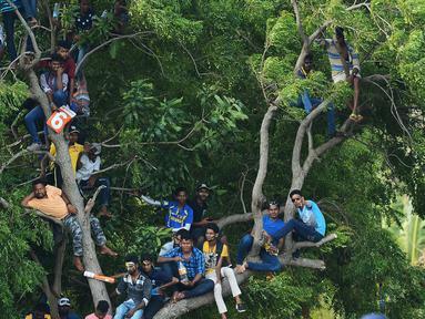 Suporter kriket Sri Lanka menonton pertandingan kriket One Day International (ODI) pertama antara Sri Lanka dan India dari atas sebuah pohon di Stadion Kriket Internasional Rangiri Dambulla di Dambulla (20/8). (AFP Photo/Lakruwan Wanniarachchi)